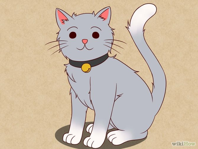 670px-Draw-a-Cat-Step-7-Version-3